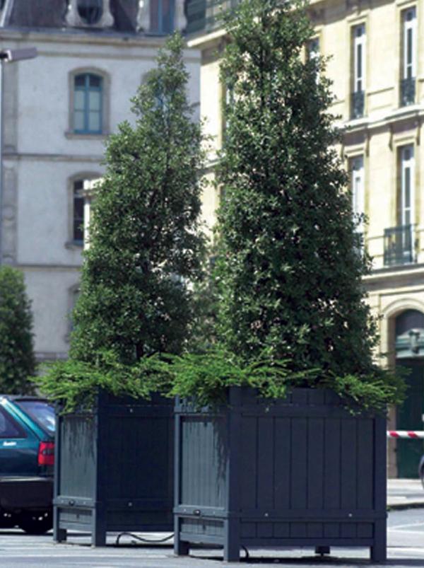 Bacs en bois pour plantes